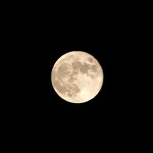 【プロが教える】月光浴にオススメのパワーストーン【必見】